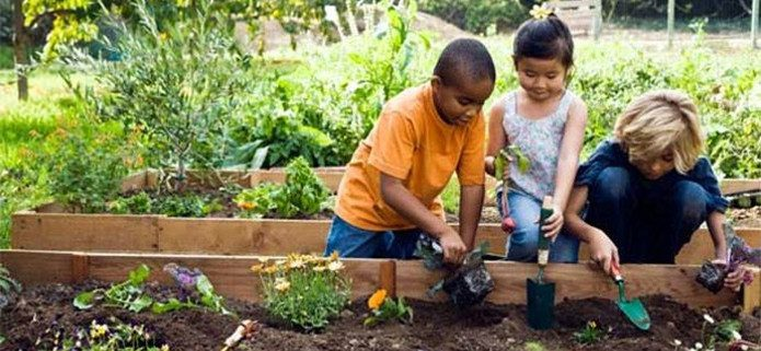 Our spring gardener's tips and how to guide to healthy relationships